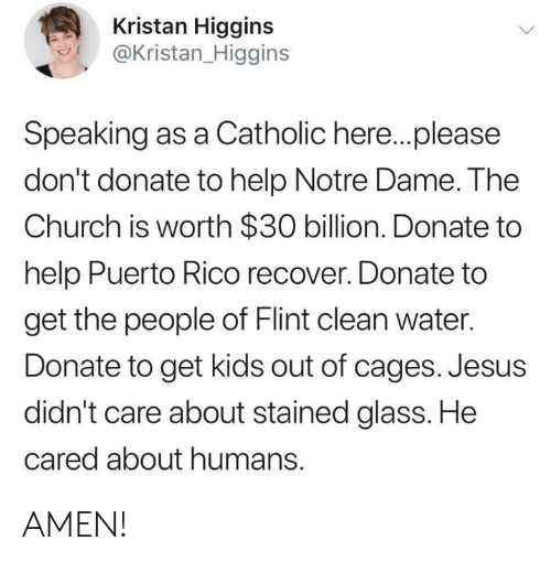 Conservative Memes: Kristan Higgins  @Kristan_Higgins  Speaking as a Catholic here..please  don't donate to help Notre Dame. The  Church is worth $30 billion. Donate to  help Puerto Rico recover. Donate to  get the people of Flint clean water.  Donate to get kids out of cages. Jesus  didn't care about stained glass. He  cared about humans. AMEN!