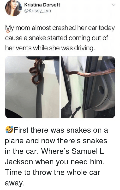 Driving, Memes, and Samuel L. Jackson: Kristina Dorsett  @Krissy_Lyn  My mom almost crashed her car today  cause a snake started coming out of  her vents while she was driving. 🤣First there was snakes on a plane and now there's snakes in the car. Where's Samuel L Jackson when you need him. Time to throw the whole car away.