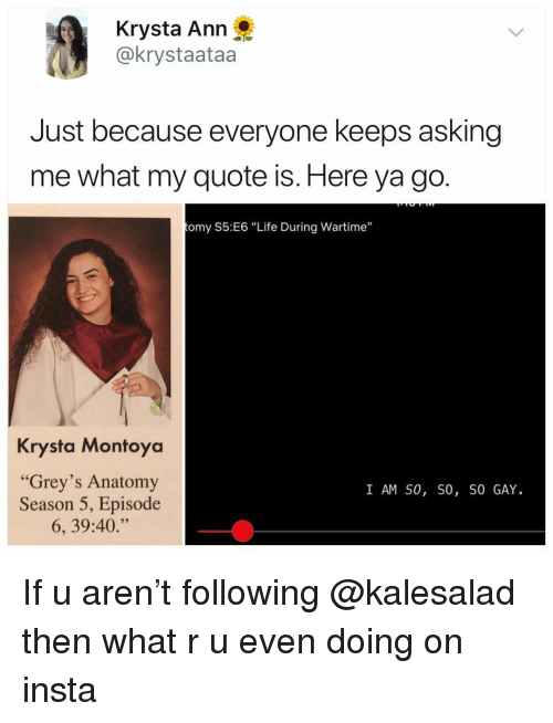 """Life, Memes, and Grey's Anatomy: Krysta Ann  @krystaataa  Just because everyone keeps asking  me what my quote is. Here ya go.  omy S5:E6 """"Life During Wartime""""  Krysta Montoya  """"Grey's Anatomy  Season 5, Episode  6, 39:40.""""  I AM SO, SO, SO GAY If u aren't following @kalesalad then what r u even doing on insta"""