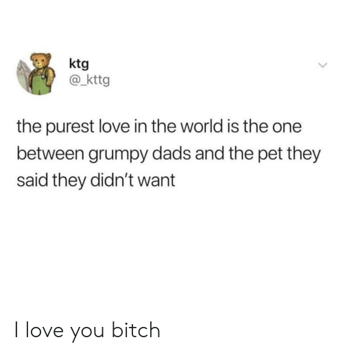 Bitch, Love, and I Love You: ktg  @ kttg  the purest love in the world is the one  between grumpy dads and the pet they  said they didn't want I love you bitch