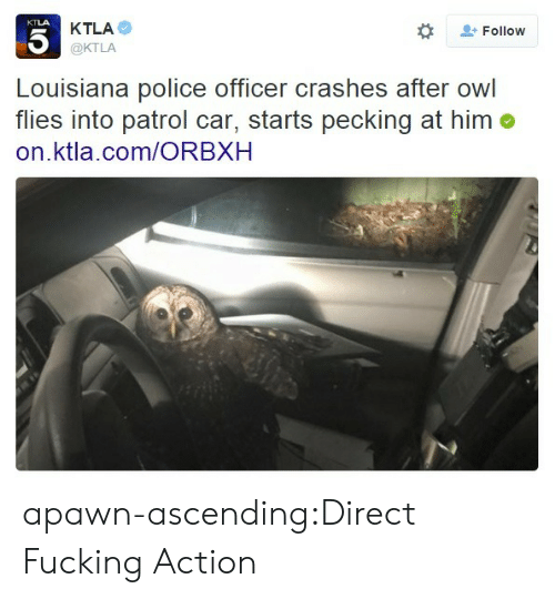 Fucking, Police, and Tumblr: KTLA  @KTLA  Follow  Louisiana police officer crashes after owl  flies into patrol car, starts pecking at him o  on.ktla.com/ORBXH apawn-ascending:Direct Fucking Action