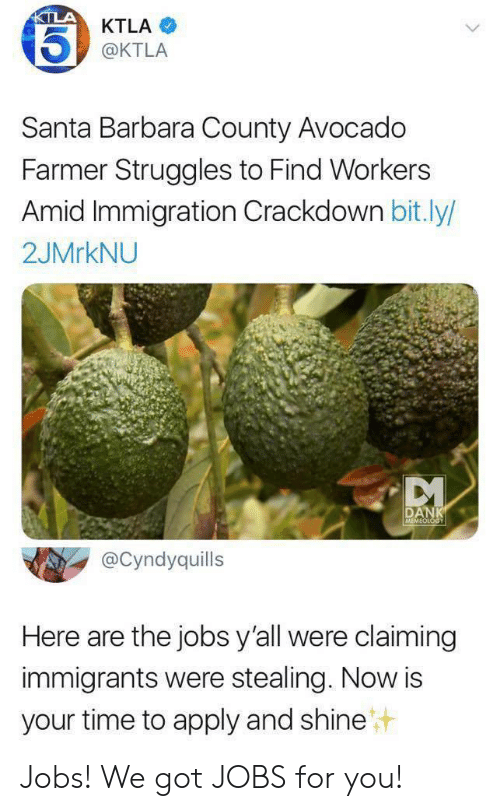 Immigration: KTLA  KTLA  @KTLA  Santa Barbara County Avocado  Farmer Struggles to Find Workers  Amid Immigration Crackdown bit.ly/  2JMRKNU  DANK  MEMEOLOGY  @Cyndyquills  Here are the jobs y'all were claiming  immigrants were stealing. Now is  your time to apply and shine Jobs! We got JOBS for you!