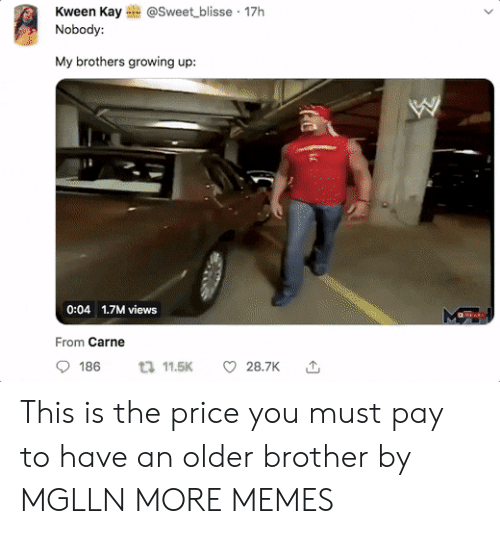 Dank, Growing Up, and Memes: Kween Kay@Sweet blisse 17h  Nobody:  My brothers growing up:  0:04 1.7M views  From Carne  9186 11.5K  28.7K 1, This is the price you must pay to have an older brother by MGLLN MORE MEMES