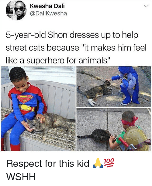 """Animals, Cats, and Memes: Kwesha Dali  @DaliKwesha  5-year-old Shon dresses up to help  street cats because """"it makes him feel  like a superhero for animals"""" Respect for this kid 🙏💯 WSHH"""