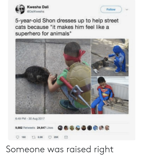 "Animals, Cats, and Superhero: Kwesha Dali  GDaliKwesha  Follow  5-year-old Shon dresses up to help street  cats because ""it makes him feel like a  superhero for animals""  6:49 PM-30 Aug 2017 Someone was raised right"