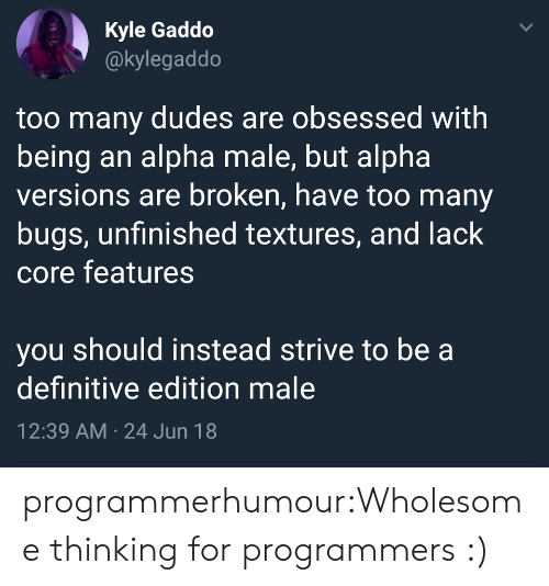 bugs: Kyle Gaddo  @kylegaddo  too many dudes are obsessed with  being an alpha male, but alpha  versions are broken, have too many  bugs, unfinished textures, and lack  core features  you should instead strive to be a  definitive edition male  12:39 AM 24 Jun 18  > programmerhumour:Wholesome thinking for programmers :)