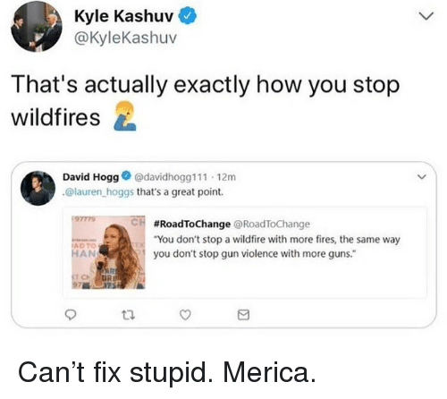 "Guns, Memes, and 🤖: Kyle Kashuv  @KyleKashuv  That's actually exactly how you stop  wildfires  David Hogg@davidhogg111 12m  @lauren hoggs that's a great point.  97779  CH  #RoadToChange @RoadToChange  ""You don't stop a wildfire with more fires, the same way  you don't stop gun violence with more guns.""  ADTO  HAN Can't fix stupid. Merica."
