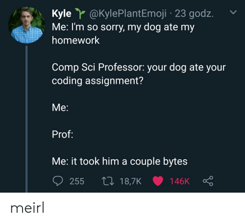 Sorry, Homework, and MeIRL: Kyle @KylePlantEmoji 23 godz.  Me: I'm so sorry, my dog ate my  homework  Comp Sci Professor: your dog ate your  coding assignment?  Me:  Prof:  Me: it took him a couple byte:s meirl