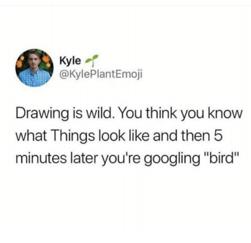 """Wild, Think, and You: Kyle  @KylePlantEmoji  Drawing is wild. You think you know  what Things look like and then!5  minutes later you're googling """"bird"""""""