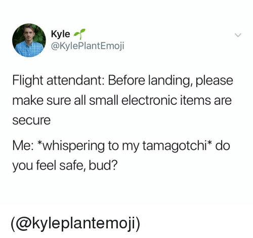 Flight, Flight Attendant, and Dank Memes: Kyle  @KylePlantEmoji  Flight attendant: Before landing, please  make sure all small electronic items are  secure  Me: *whispering to my tamagotchi* do  you feel safe, bud? (@kyleplantemoji)