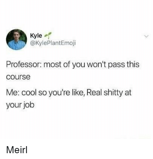 Cool, MeIRL, and Job: Kyle  @KylePlantEmoji  Professor: most of you won't pass this  course  Me: cool so you're like, Real shitty at  your job Meirl