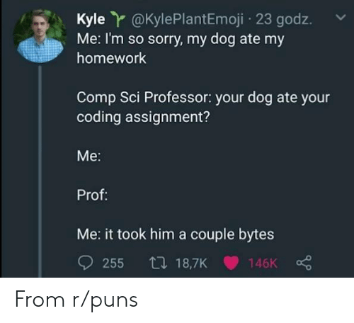 Puns, Sorry, and Homework: Kyle r@KylePlantEmoji 23 godz.  Me: I'm so sorry, my dog ate my  homework  Comp Sci Professor: your dog ate your  coding assignment?  Me:  Prof:  Me: it took him a couple bytes From r/puns