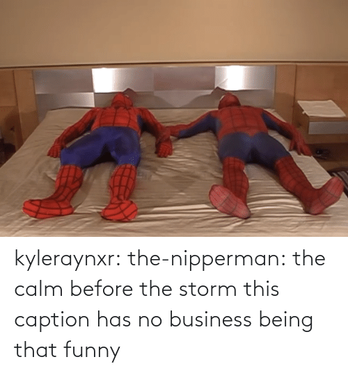 calm: kyleraynxr: the-nipperman: the calm before the storm this caption has no business being that funny