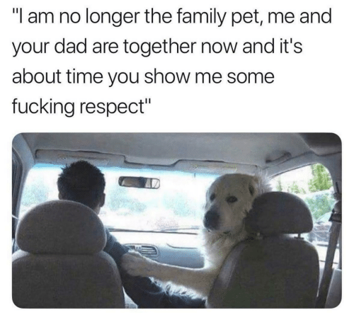 """show me: """"l am no longer the family pet, me and  your dad are together now and it's  about time you show me some  fucking respect"""""""