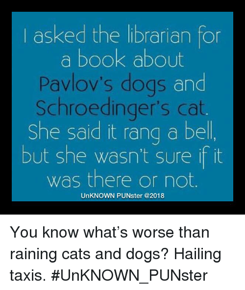 Cats, Dogs, and Memes: l asked the librarian for  a book about  Pavlov's dogs and  Schroedinger's cat.  She said it rang a bel  but she wasn't sure it it  was there or not.  UnKNOWN PUNster @2018 You know what's worse than raining cats and dogs? Hailing taxis. #UnKNOWN_PUNster