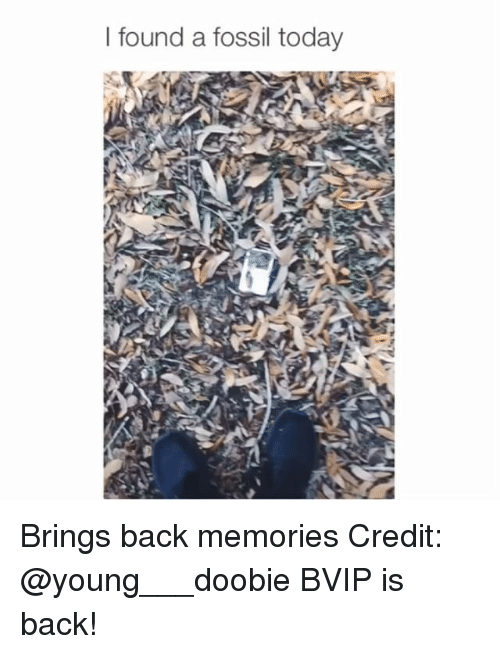 Memes, Fossil, and Today: l found a fossil today Brings back memories Credit: @young___doobie BVIP is back!