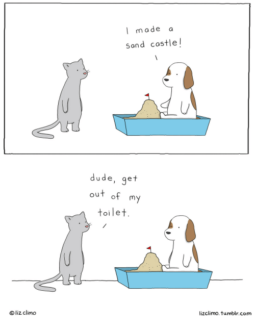 Lizclimo Tumblr: l made a  Sand costle!  dude, get  out of  toilet  O liz climo  lizclimo. tumblr.com