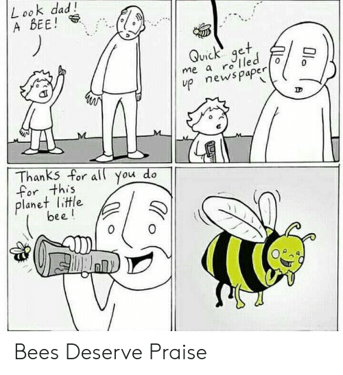 Dad, Bees, and Led: L ook dad!  A BEE  Quick get  me a ro led  up newspapero  Thanks for all you do  for this  planet little  0 Bees Deserve Praise