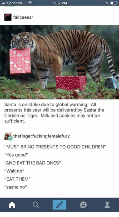 """Bad, Children, and Christmas: l Sprint Wi-Fi  2:57 PM  fallcaesar  Santa is on strike due to global warming. All  presents this year will be delivered by Sasha the  Christmas Tiger. Milk and cookies may not be  sufficient.  thefingerfuckingfemalefury  """"MUST BRING PRESENTS TO GOOD CHILDREN""""  """"Yes good""""  AND EAT THE BAD ONES""""  """"Wait no""""  """"EAT THEM""""  """"sasha no'"""""""