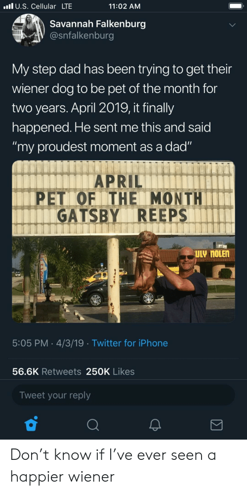 "Dad, Iphone, and Twitter: l U.S. Cellular LTE  11:02 AM  Savannah Falkenburg  @snfalkenburg  My step dad has been trying to get their  wiener dog to be pet of the month for  two years. April 2019, it finally  happened. He sent me this and said  ""my proudest moment as a dad""  APRIL  PET OF ITHE MONTH  GATSBY REEPS  5:05 PM 4/3/19 Twitter for iPhone  56.6K Retweets 250K Likes  Tweet your reply Don't know if I've ever seen a happier wiener"