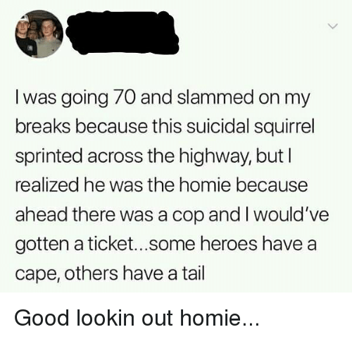 Homie, Memes, and Good: l was going 70 and slammed on my  breaks because this suicidal squirrel  sprinted across the highway, but l  realized he was the homie because  ahead there was a cop and I would've  gotten a ticket...some heroes have a  cape, others have a tail Good lookin out homie...