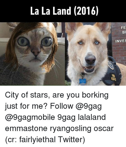 Memes, 🤖, and Oscar: La La Land (2016)  FE  Bu  INVES City of stars, are you borking just for me? Follow @9gag @9gagmobile 9gag lalaland emmastone ryangosling oscar (cr: fairlyiethal Twitter)