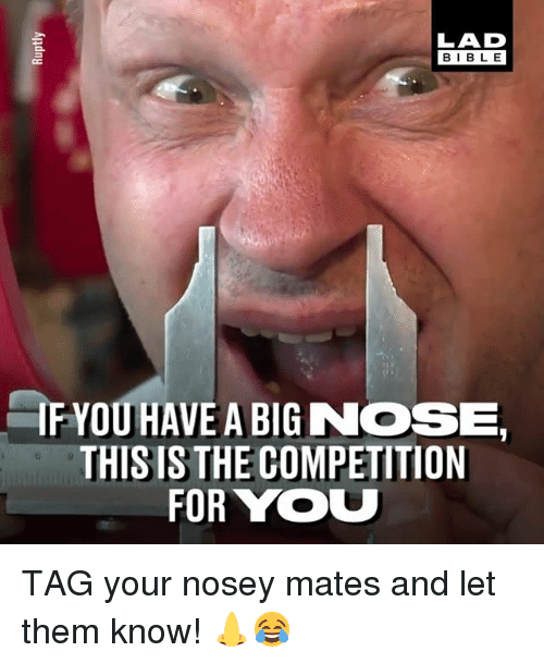Memes, Big Nose, and 🤖: LAD  BIBL E  IF YOU HAVE A BIG NOSE  THIS IS THE COMPETITION  FOR YOU TAG your nosey mates and let them know! 👃😂