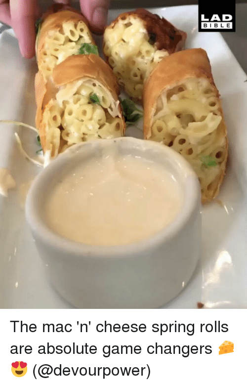 Memes, Game, and Spring: LAD  BIBL E The mac 'n' cheese spring rolls are absolute game changers 🧀😍 (@devourpower)