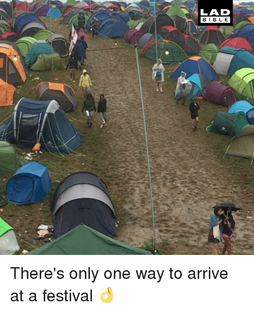 Memes, Festival, and Only One: LAD  BIBL E There's only one way to arrive at a festival 👌