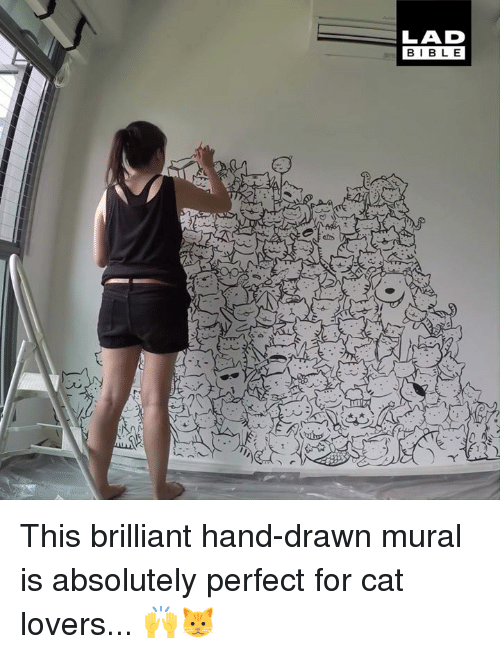 Dank, Brilliant, and 🤖: LAD  BIBL E This brilliant hand-drawn mural is absolutely perfect for cat lovers... 🙌🐱