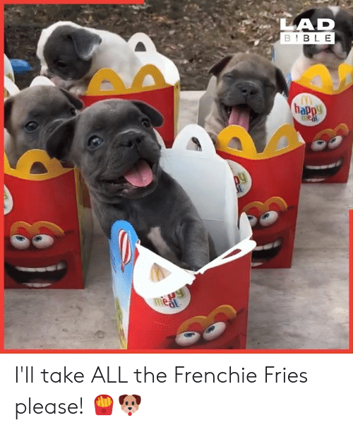 Dank, Bible, and Happy: LAD  BIBLE  happy  1Paw  meat I'll take ALL the Frenchie Fries please! 🍟🐶