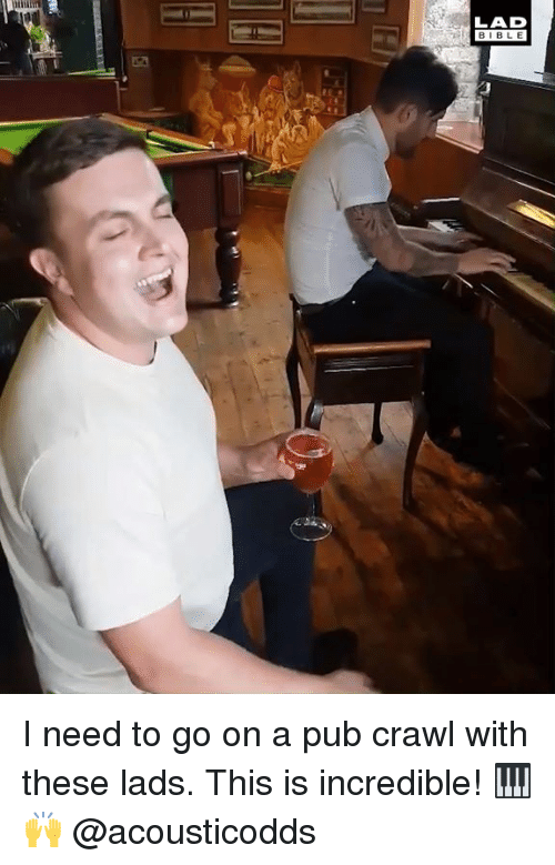 Dank, Bible, and 🤖: LAD  BIBLE I need to go on a pub crawl with these lads. This is incredible! 🎹🙌  @acousticodds