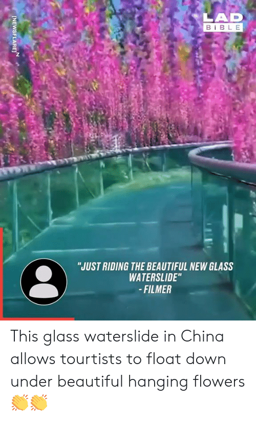 "Beautiful, Dank, and China: LAD  BIBLE  ""JUST RIDING THE BEAUTIFUL NEW GLASS  WATERSLIDE""  -FILMER  INEWSFLARE This glass waterslide in China allows tourtists to float down under beautiful hanging flowers 👏👏"