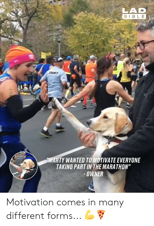 "Dank, Bible, and 🤖: LAD  BIBLE  MARTY WANTED TO MOTIVATE EVERYONE  TAKING PART IN THE MARATHON""  OWNER Motivation comes in many different forms... 💪🍕"