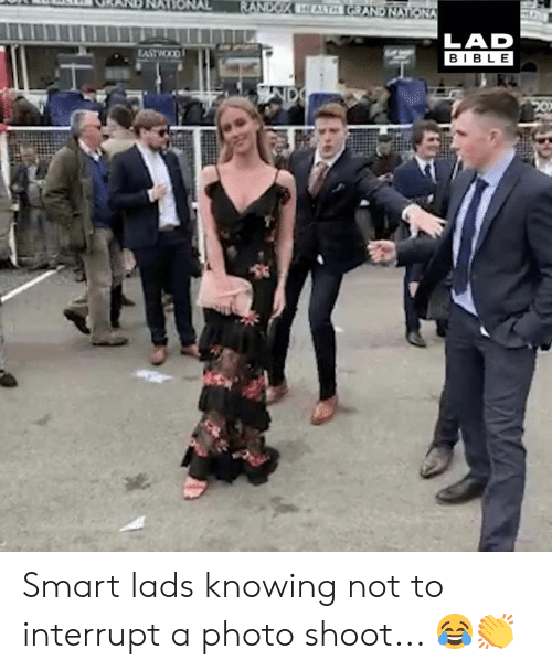 Dank, Bible, and 🤖: LAD  BIBLE Smart lads knowing not to interrupt a photo shoot... 😂👏
