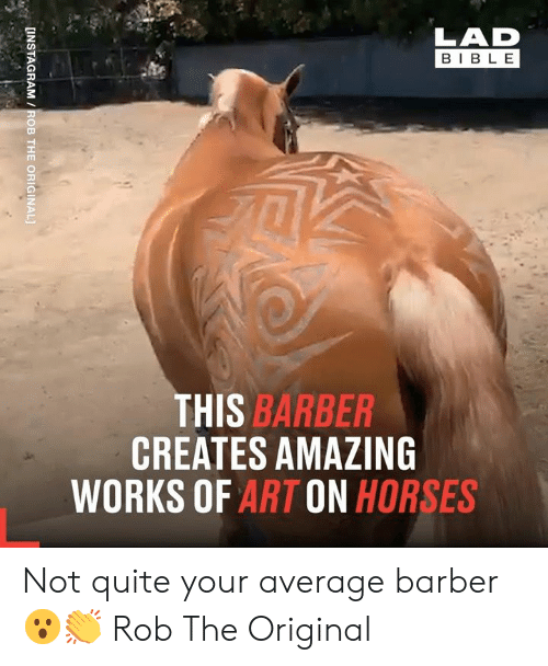 Barber: LAD  BIBLE  THIS BARBER  CREATES AMAZING  WORKS OF ART ON HORSES  [INSTAGRAM /ROB THE ORIGINAL] Not quite your average barber 😮👏  Rob The Original