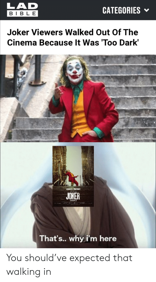 Joker, Bible, and Dark: LAD  CATEGORIES  BIBLE  Joker Viewers Walked Out Of The  Cinema Because It Was 'Too Dark'  JOADUN PHCB  JOKER  That's.. why i'm here You should've expected that walking in