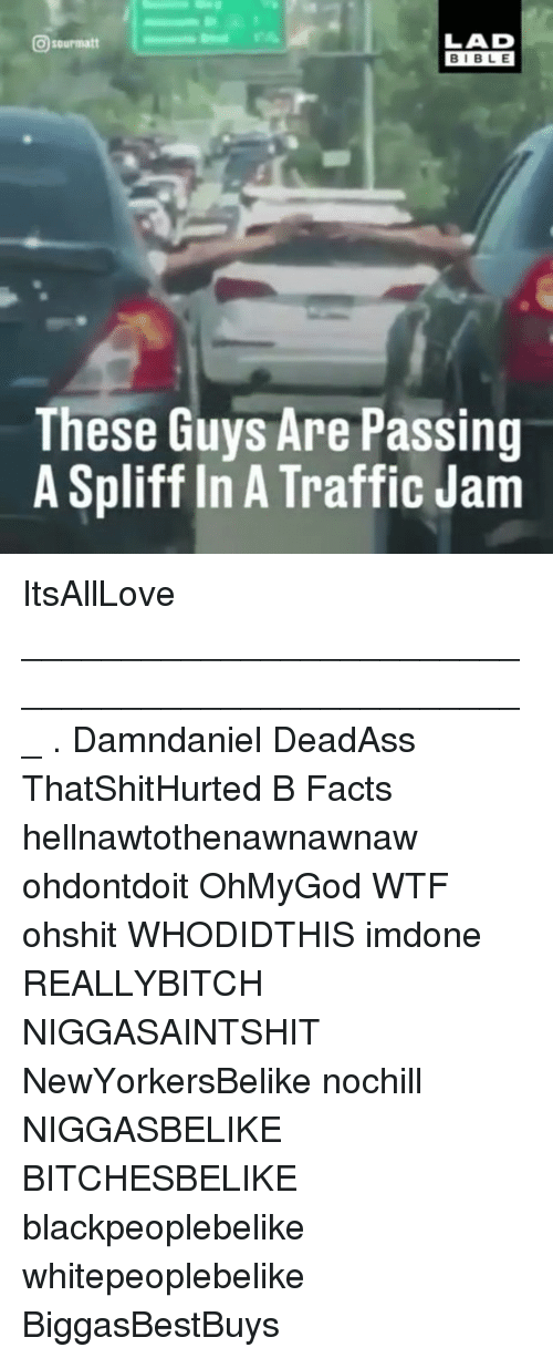 Facts, Memes, and Traffic: LAD  sourmatt  BIBLE  These Guys Are Passing  A Spliffin A Traffic Jam ItsAllLove ___________________________________________________ . Damndaniel DeadAss ThatShitHurted B Facts hellnawtothenawnawnaw ohdontdoit OhMyGod WTF ohshit WHODIDTHIS imdone REALLYBITCH NIGGASAINTSHIT NewYorkersBelike nochill NIGGASBELIKE BITCHESBELIKE blackpeoplebelike whitepeoplebelike BiggasBestBuys