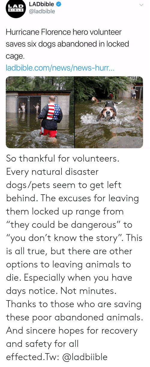 "Animals, Dogs, and Instagram: LADbible  LAD  IBLE @ladbible  Hurricane Florence hero volunteer  saves six dogs abandoned in locked  cage  ladbible.com/news/news-hurr So thankful for volunteers. Every natural disaster dogs/pets seem to get left behind. The excuses for leaving them locked up range from ""they could be dangerous"" to ""you don't know the story"". This is all true, but there are other options to leaving animals to die. Especially when you have days notice. Not minutes. Thanks to those who are saving these poor abandoned animals. And sincere hopes for recovery and safety for all effected.Tw: @ladbiible"