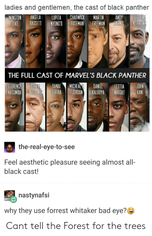 Bad, Martin, and Aesthetic: ladies and gentlemen, the cast of black panther  WINSTON ANGELA LUPITA CHADWICK MARTIN ANDY  DUKE BASSETT NYONGOBOSEMANFEMANSERKIS K.BR  THE FULL CAST OF MARVEL'S BLACK PANTHER  ORENCE ORES DANAIMICHEALDANIEL ETTIA JOHN  KASUMBA) NNITAKER EURIRA I JORDAN KALUUYA WRIGHT -KANIt  the-real-eye-to-see  Feel aesthetic pleasure seeing almost all-  black cast!  nastynafsi  why they use forrest whitaker bad eye? Cant tell the Forest for the trees