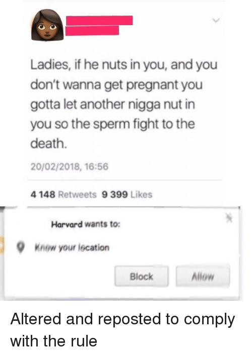 Pregnant, Death, and Harvard: Ladies, if he nuts in you, and you  don't wanna get pregnant you  gotta let another nigga nut in  you so the sperm fight to the  death.  20/02/2018, 16:56  4 148 Retweets 9 399 Likes  Harvard wants to:  Knew your lecation  Block  Allow Altered and reposted to comply with the rule