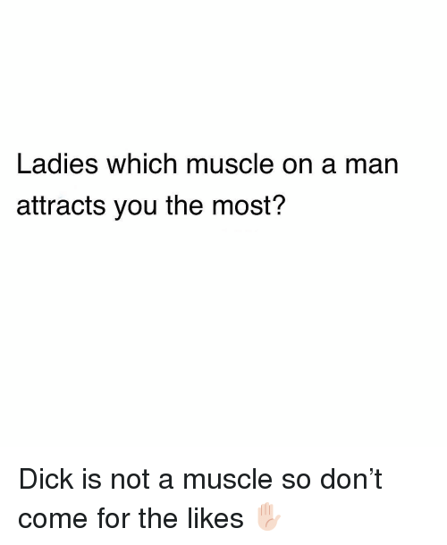 Memes, Dick, and 🤖: Ladies which muscle on a man  attracts you the most? Dick is not a muscle so don't come for the likes ✋🏻