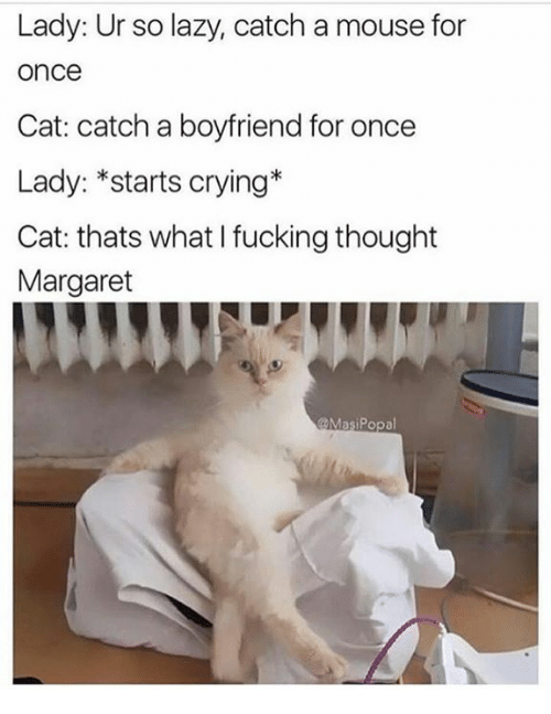 Crying, Fucking, and Lazy: Lady: Ur so lazy, catch a mouse for  once  Cat: catch a boyfriend for once  Lady: *starts crying*  Cat: thats what I fucking thought  Margaret  @MasiPopal