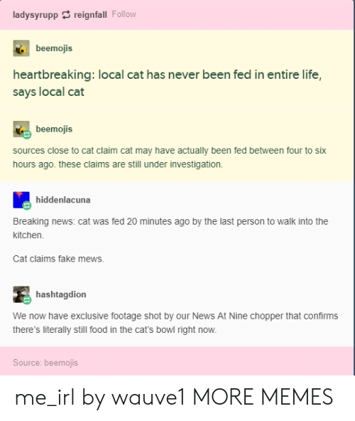 Cats, Dank, and Fake: ladysyruppreignfall Follow  beemojis  heartbreaking: local cat has never been fed in entire life,  says local cat  beemojis  sources close to cat claim cat may have actually been fed between four to six  hours ago. these claims are still under investigation.  hiddenlacuna  Breaking news: cat was fed 20 minutes ago by the last person to walk into the  kitchen  Cat claims fake mews.  hashtagdion  We now have exclusive footage shot by our News At Nine chopper that confirms  there's literally still food in the cat's bowl right now.  Source: beemojis me_irl by wauve1 MORE MEMES