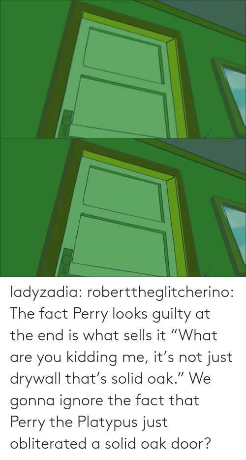 "The Fact That: ladyzadia:  roberttheglitcherino: The fact Perry looks guilty at the end is what sells it  ""What are you kidding me, it's not just drywall that's solid oak."" We gonna ignore the fact that Perry the Platypus just obliterated a solid oak door?"