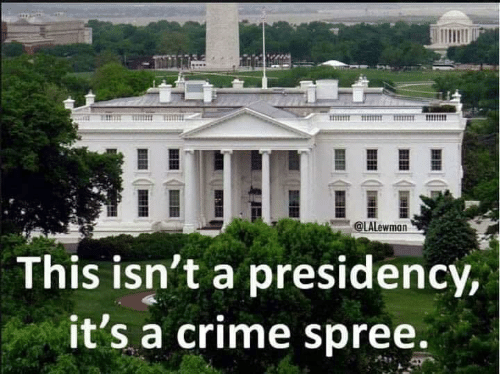 Crime, This, and Its A: @LALewman  This isn't a presidency,  it's a crime spree.