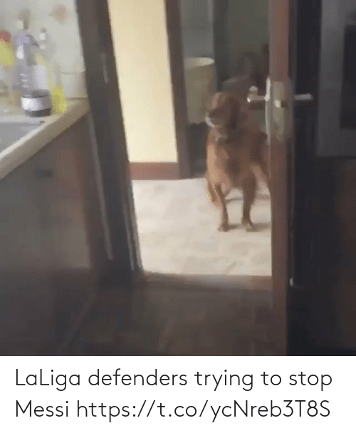 Trying: LaLiga defenders trying to stop Messi  https://t.co/ycNreb3T8S