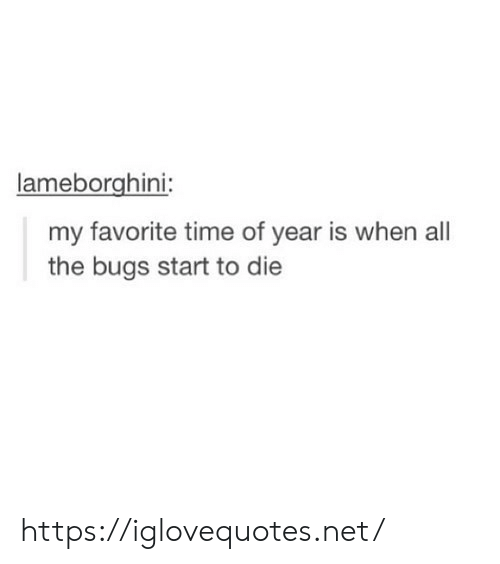 Time, All The, and Net: lameborghini  my favorite time of year is when all  the bugs start to die https://iglovequotes.net/