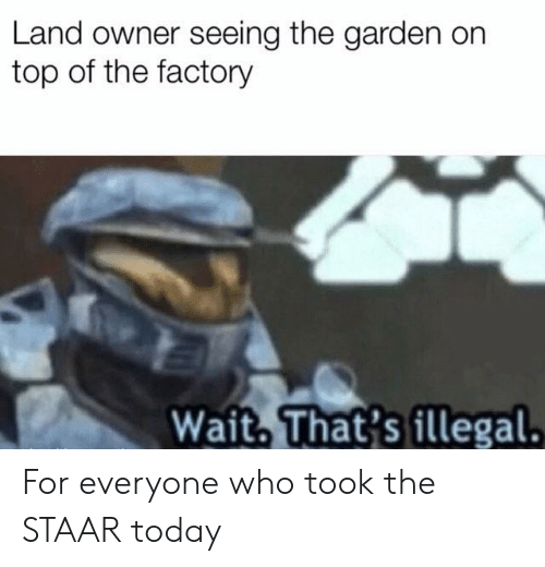 Staar: Land owner seeing the garden on  top of the factory  Wait, That's illegal For everyone who took the STAAR today