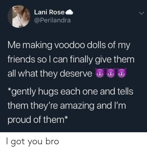 Im Proud: Lani Rose  @Perilandra  Me making voodoo dolls of my  friends so I can finally give them  all what they deserve  *gently hugs each one and tells  them they're amazing and I'm  proud of them* I got you bro